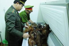 Cấm cán bộ ăn nhậu, nhận quà biếu bằng thịt thú rừng