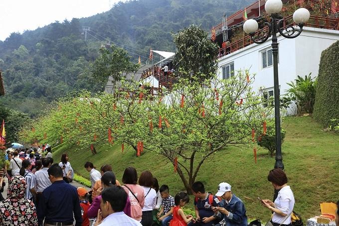 Lễ chùa,Tây Thiên