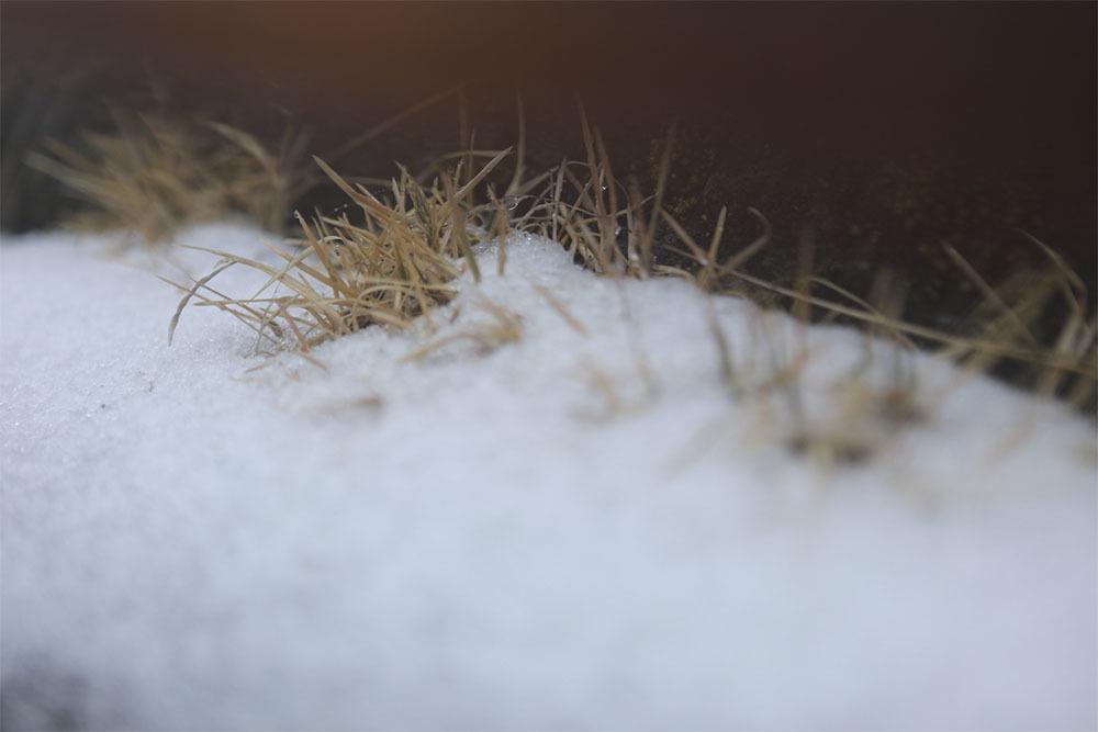 tuyết rơi,băng tuyết,băng giá,Fansipan
