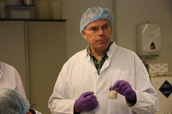 thịt nhân tạo,nhà khoa học,phòng thí nghiệm