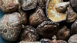 Giá gần 10 triệu đồng/kg, nấm hương Nhật được bà nội trợ Việt 'săn lùng'