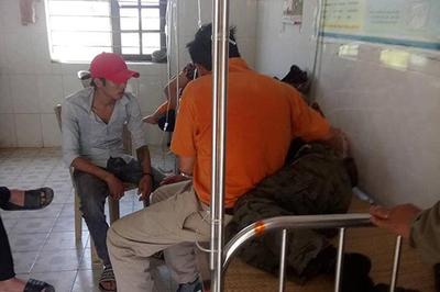 Đi tảo mộ ngày rằm, 2 lãnh đạo xã và 5 người dân bị ong đốt nhập viện