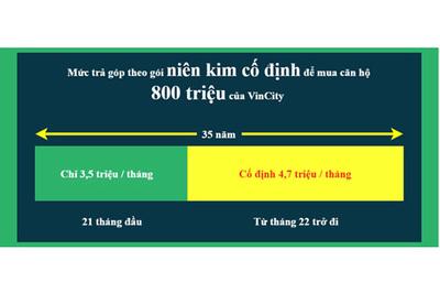 Ai nên chọn gói 'niên kim cố định' khi mua nhà VinCity?