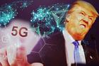 Tổng thống Donal Trump muốn sớm phát triển mạng 6G