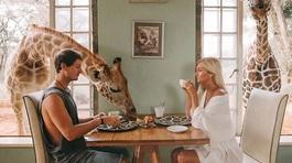 Chỉ nhờ du lịch, cặp đôi này có thể kiếm tới 9.000 USD cho mỗi bức ảnh