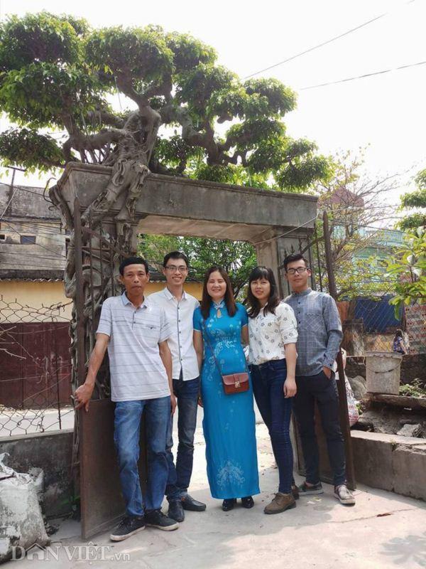 Xôn xao Nam Định: Cây sanh cổ bán kèm cổng nhà giá 6.000 USD? Cay-sanh-co-ban-kem-cong-nha-gia-6000-usd-2