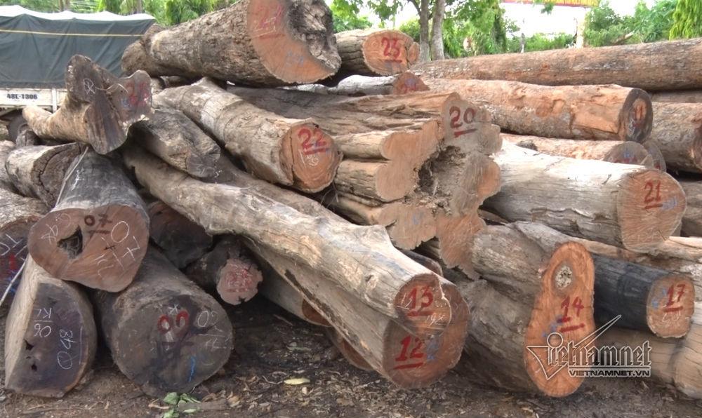 Thượng sĩ công an tử vong khi canh gỗ lậu Phượng 'râu'