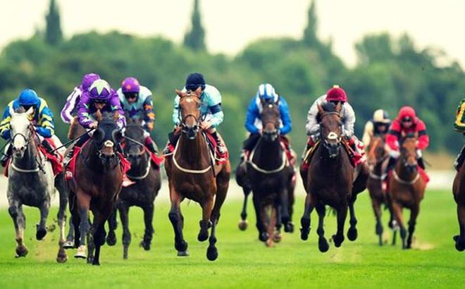 Kết quả hình ảnh cho Danh tiếng của Đua ngựa ở Anh