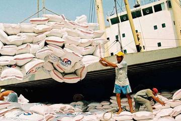Việt Nam lần đầu tiên phải nhập gạo từ Ấn Độ