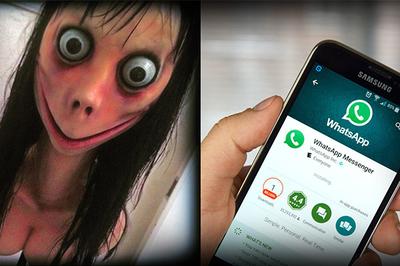 Thử thách Momo và sự thật về tin đồn làm rúng động mạng xã hội