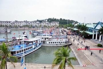 Trượt chân rơi xuống nước, du khách Nhật tử vong tại cảng Tuần Châu