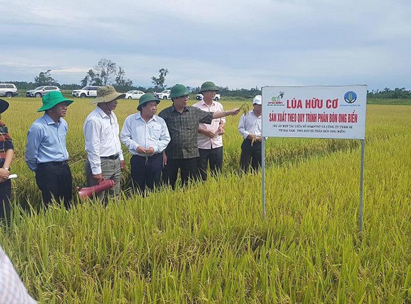 nông nghiệp hữu cơ,nông dân