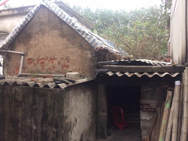 Gia đình bà Trần Thị Dung - Thái Bình