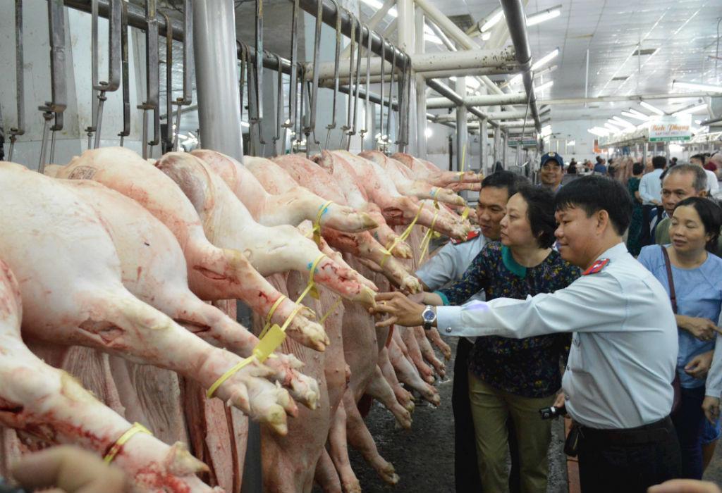 Chặn dịch lây lan, TP.HCM không nhận nguồn lợn phía Bắc