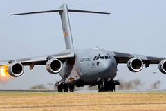 'Ngựa thồ' C-17 bị chim lao vào động cơ khi chuẩn bị cất cánh