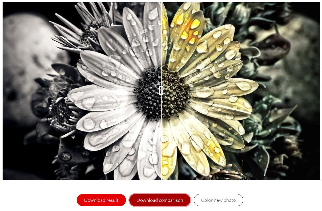 AI colourise có thể tô ảnh trắng đen thành ảnh màu