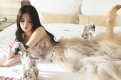 Dương Siêu Việt - thần tiên tỷ tỷ 21 tuổi bị chê là thảm họa showbiz