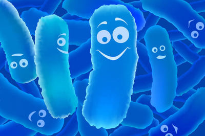 Lợi khuẩn Bifido - 'chìa khóa vàng' giúp đại tràng khỏe mạnh