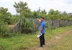 Vụ xẻ đất rừng bán tiền tỉ: 6,3 ha đất rừng không cánh mà bay