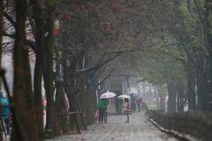 Thời tiết Hà Nội 3 ngày tới: Âm u từ sáng tới đêm