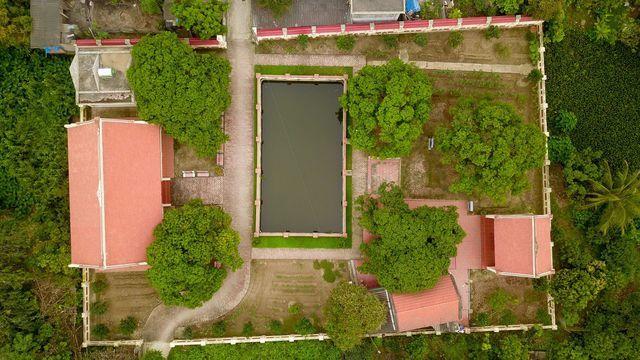 Bí ẩn cây vải tổ 200 năm được xác lập kỷ lục lâu đời nhất Việt Nam