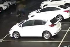 Hai cậu bé bị truy tố hình sự khi đập phá 23 chiếc xe Toyota
