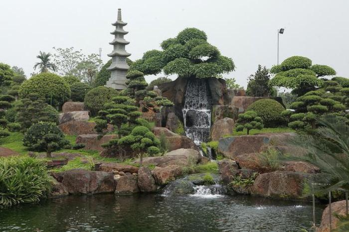 Sửng sốt khu vườn Nhật và đàn cá Koi 10 tỷ của đại gia Thái Nguyên