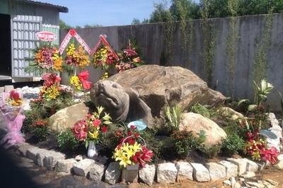 Cận cảnh rùa đá 'Hồn thiêng đất Việt' nặng 20 tấn, 600 triệu không bán