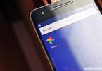 Google ra mắt Express, giúp sao lưu ảnh nhanh với Google Photos
