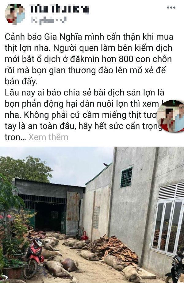 Cô gái tung tin đào 800 con lợn dịch đem bán, bị phạt 10 triệu