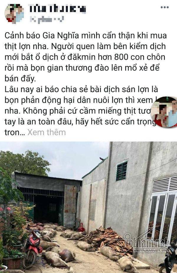 Thực hư cô gái tung tin 800 con lợn dịch bị đào xẻ thịt bán