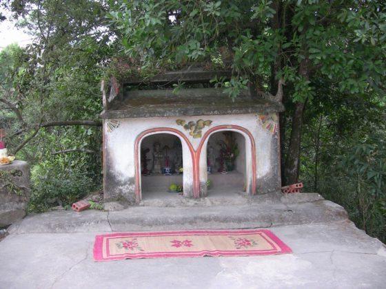 Lão nông đi tìm đàn bò, phát hiện phế tích chùa Ba Vàng