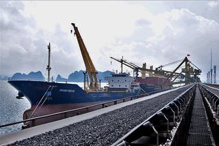 Thiếu than vẫn xin xuất hàng triệu tấn: Trung Quốc từ chối, hàng Việt ế