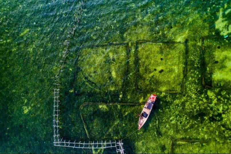 Việt Nam đẹp 'nghẹt thở' qua ống kính nhiếp ảnh gia Mỹ