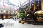 Thầy Thái Minh không họp cùng Giáo hội tại chùa Quán Sứ