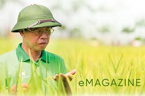 Biến 11 hạt gạo thành hàng chục ngàn tỷ: Giai thoại của 'nông dân mới' Trần Mạnh Báo