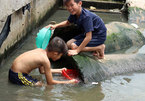 Latest child drownings another warning