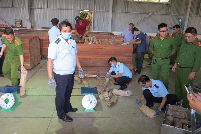 Đà Nẵng bắt hơn 9 tấn nghi là ngà voi cất giấu tinh vi