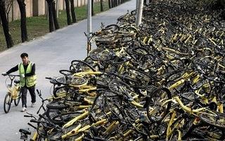 Xót xa 'nghĩa địa' hàng nghìn ô tô bị bỏ hoang