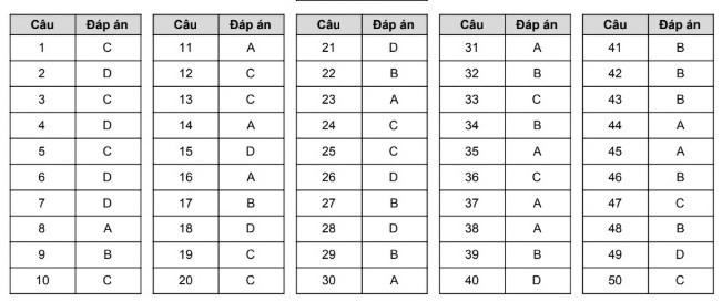 Đề Tiếng Anh thi thử THPT quốc gia năm 2019 của Hà Nội