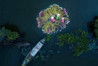 Ngắm những bức ảnh giành giải thưởng quốc tế của VN