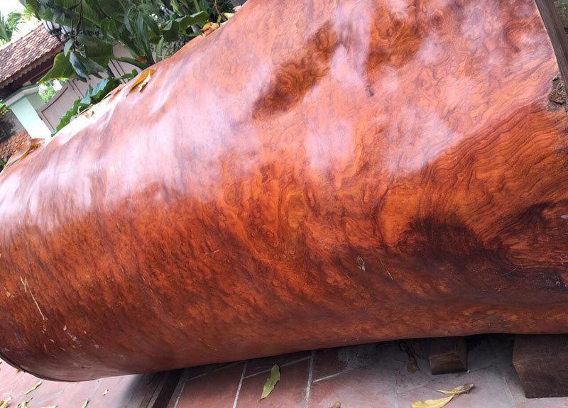 Bí ẩn khúc gỗ dài 3 mét, đại gia Hải Phòng trả giá gần 4 tỷ