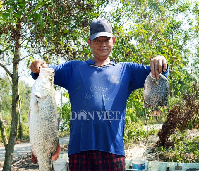 Cây bí ẩn, thả xuống nước hàng trăm kg cá trúng thuốc tha hồ vớt