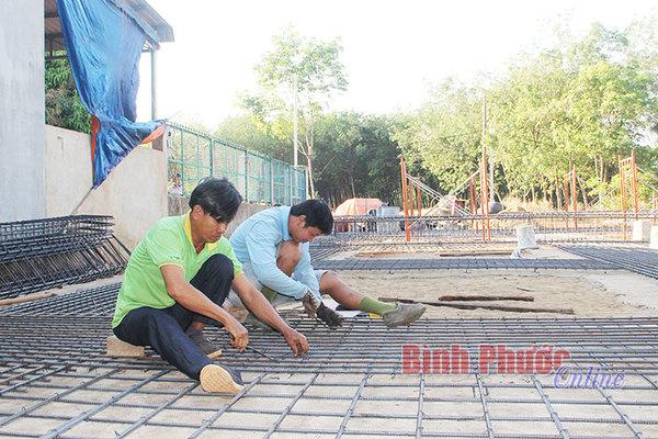 Nghề hot ở Bình Phước: Xây nhà tiền tỷ đón 'lộc trời' cũng tiền tỷ