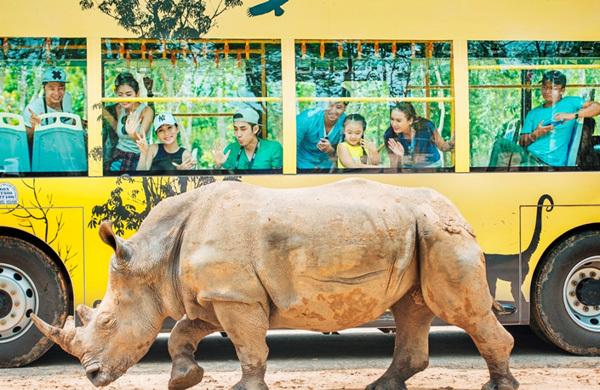 Tê giác đầu tiên vừa chào đời tại Vinpearl Safari Phú Quốc