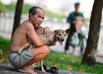Hãi hùng chó chạy rông khắp Sài Gòn