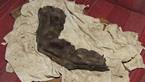 Bí ẩn ngón tay dài 38cm - người khổng lồ trong truyền thuyết là có thật?