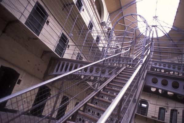 Tù nhân Mỹ kiện trại giam vì chuột bọ rơi đầy bàn ăn