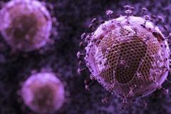 Đã bắt được đối tượng tấn công khiến 10 người phải điều trị phơi nhiễm HIV