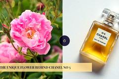 Bí mật bông hoa độc đáo đằng sau lọ Chanel No 5